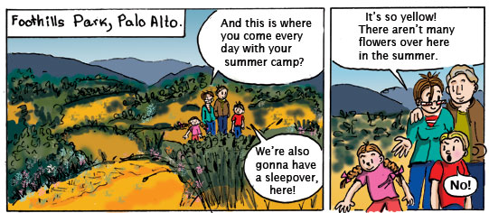 Hiking at Foothills Park, Palo Alto. Comic book series Québec-California.